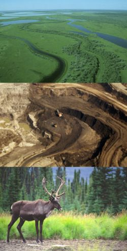 collage of oilsands images