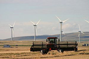 Albertans have more than 20 years' experience living near wind turbines.