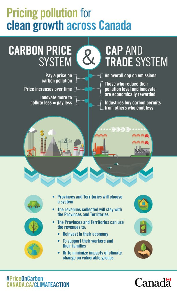 Carbon pricing infographic