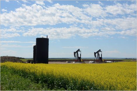 Oil and gas infrastructure on rural Alberta agricultural land