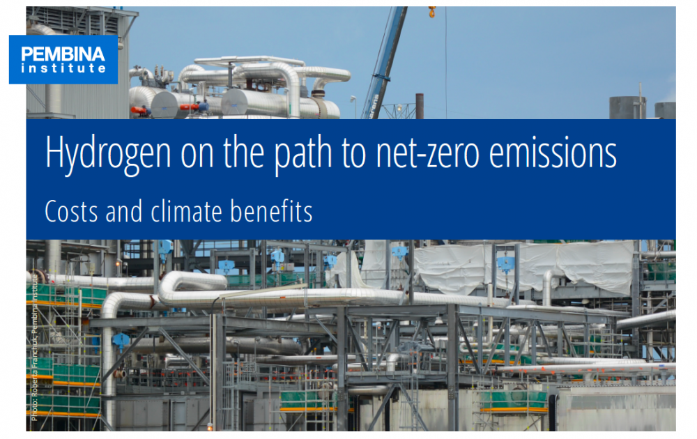 Hydrogen on the path to net-zero emissions (publication)